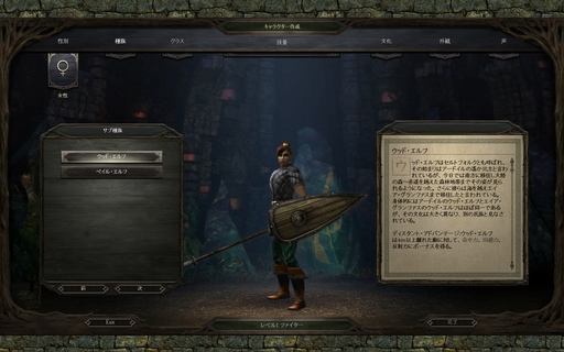 Pillars of Eternity_キャラ作成 種族.jpg