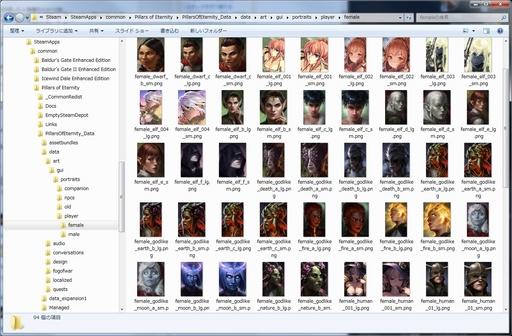 Pillars of Eternity_ポートレート画像を所定の場所に入れる.jpg